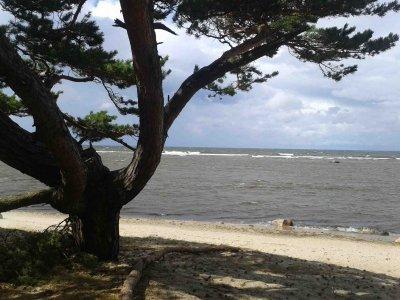 Sturm, Strandung und sonstiges